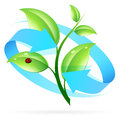 Logo nature recycle arrow ladybird Stock Photography