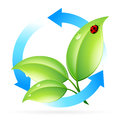Logo nature recycle leaves arrows ladybird Stock Photo