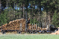 Logs being loaded for transfer a flatbed loads harvested to the mills Royalty Free Stock Image