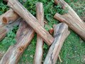 Details wood and Useless old logs can be made into firewood. Royalty Free Stock Photo