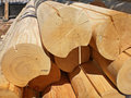 Logs for construction of the house. Royalty Free Stock Photo