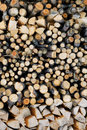 Logs of firewood a stack in storage Royalty Free Stock Images
