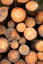 Logs stacked background Royalty Free Stock Photography