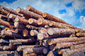 Logs store on blue sky and clouds background Royalty Free Stock Photo
