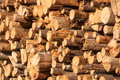Logs store at sunset light Stock Image