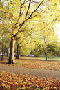 London Autumn Colors Royalty Free Stock Photography