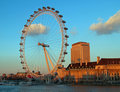 The London Eye in London Royalty Free Stock Images