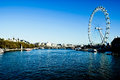 London Eye and river Thames Royalty Free Stock Photography