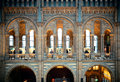 London natural history museum uk sep interior on september in uk it is europe s tallest ferris wheel and the most popular Royalty Free Stock Image