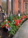 London: street with patriotic planting Royalty Free Stock Photos