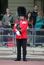 London uk july soldier of the royal guard july in london Stock Photography