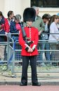 London uk july soldier of the royal guard july in london on parade for queens birthday Royalty Free Stock Image