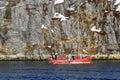 Lone fishing boat floating near steep cliff, Nuuk fjord, Greenla Royalty Free Stock Photo