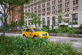 Lone NYC Taxi Cab Royalty Free Stock Images