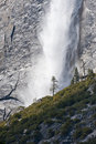 Lone pine and waterfall Stock Photo