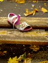 Lone shoe among autumn leaves of a lost child. Royalty Free Stock Photo