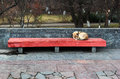 A lone sleeping dog on the street Royalty Free Stock Photo