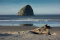 Lone surfer a walks along an oregon coastal beach in search of good waves Royalty Free Stock Photo