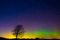 Lone tree under aurora borealis a stands the northern lights and a star filled night sky in a field near the town of barre vermont Stock Photography