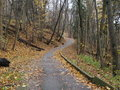 Lonely autumn road toronto ontario canada a winding through a hilly forest in Stock Image