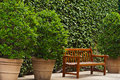 Lonely bench brown wooden in between some potted plants Stock Image