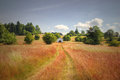 Lonely chapel on red grass field chamber with path Stock Photo