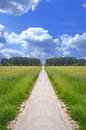 Lonely dirt path Royalty Free Stock Photography