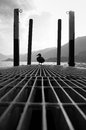 Lonely duck on a pier overlooking a lake in black and white como bellagio italy surrounded with mountains Royalty Free Stock Image