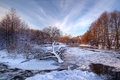 Lonely fallen tree on the background of the frozen, icy river at sunset Royalty Free Stock Photo