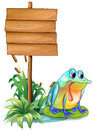 A lonely frog beside the empty board illustration of on white background Stock Images