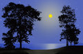 Lonely full moon night beside the sea Royalty Free Stock Photo