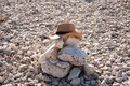 Picture : Lonely grave in a rocky desert with a cowboy hat   on