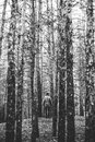 A lonely guy in a pine forest in the autumn time. Monochrome. Royalty Free Stock Photo