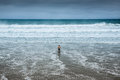Lonely man entering the water at overcast beach Royalty Free Stock Photo