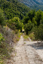 Lonely road in dalmatia igrane croatia Royalty Free Stock Photography