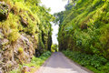 Lonely road through the green hills. Royalty Free Stock Photography