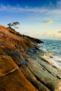 Lonely tree in cape at runrise, of koh samet islan Stock Photo