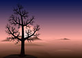 Lonely tree sunset mountains in fog vector background without leaves on the hill time heads of a looks through the with copy space Royalty Free Stock Photos