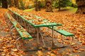 Long autumn picnic table Stock Images