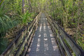 Long Boardwalk At Slough Preserve Royalty Free Stock Photos