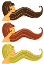 Long brown blond and red hair vector illustration of Royalty Free Stock Photos
