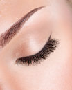 Long curly eyelashes macro image of Royalty Free Stock Photo