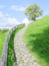 Long and difficult upstairs road paved with cobble stones on top of a green summer hill Royalty Free Stock Image