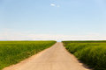Long dirt road through fields Royalty Free Stock Photo