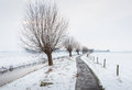 Long ditch with thin ice in a snowy landscape Royalty Free Stock Photo
