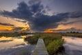 Long exposure Footbridge in wetland Royalty Free Stock Photo
