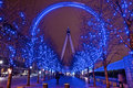 Long Exposure Millennium Eye B...