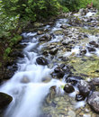 Long exposure photo of a mountain stream with blurred white water washing stones Royalty Free Stock Image