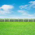 Long fence and green grass white on blue sky Stock Image