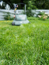 Long grass getting mowed Royalty Free Stock Photography